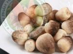 Các loại nấm rơm phổ biến hiện nay