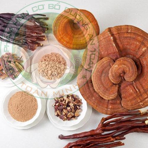 Tác dụng của nấm linh chi cho người lớn tuổi
