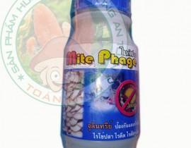 Thuốc hữu cơ chuyên trị bọ rệp trong nhà nấm