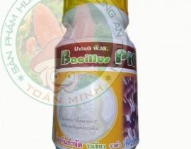 Thuốc hữu cơ chuyên trị mốc cam xanh nâu trong nhà nấm