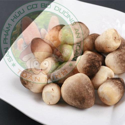 Hướng dẫn cách trồng nấm rơm mang lại hiệu quả kinh tế cao